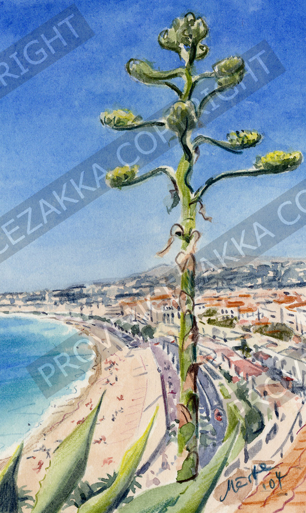 Nice, Agave Baie des Anges, water color painting, signed print
